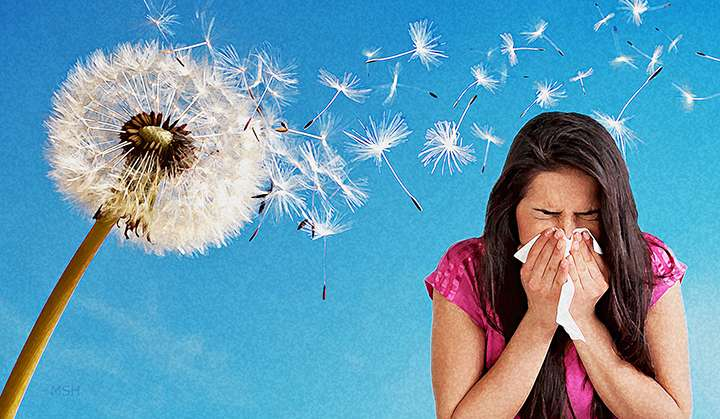 Relieving Seasonal Allergies with Chiropractic Care
